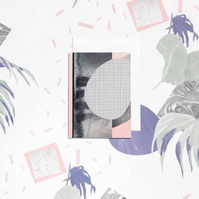 LES SUCCULENTES - Illustrations - Papeterie
