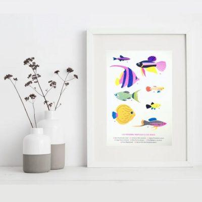 BARBA STUDIO - Illustrations - Papeterie