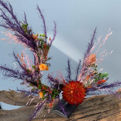 MA FLEURS VAGABONDES - Fleurs - Plantes